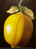80384c-gonzalez-big_lemon
