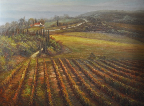 44445_adan_f_tuscan_vineyard